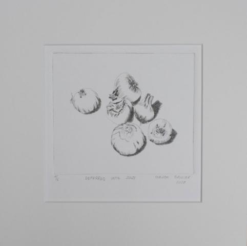 Drypoint print of geranium bulbs