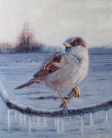 Winter Sparrow by John Holmes