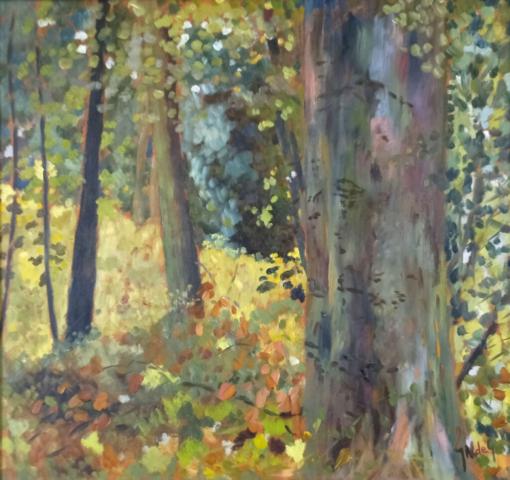 Abbotstone Woods