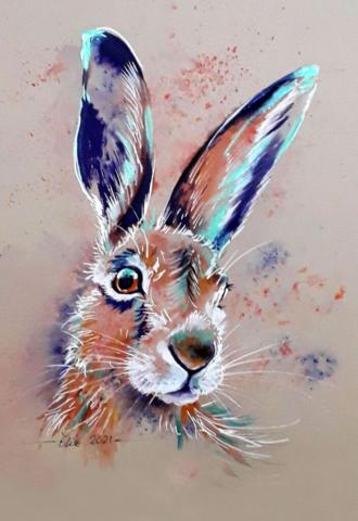 Hare Image