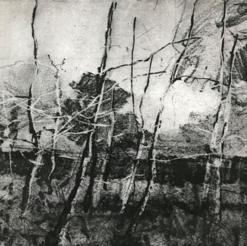 Birches by Ruth Wharton