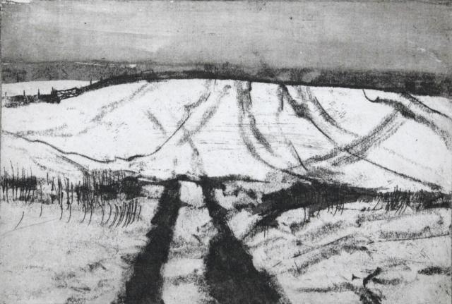 Snowfield by Ruth Wharton